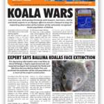 AFA January 2017 Newsletter