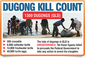 dugong kill count