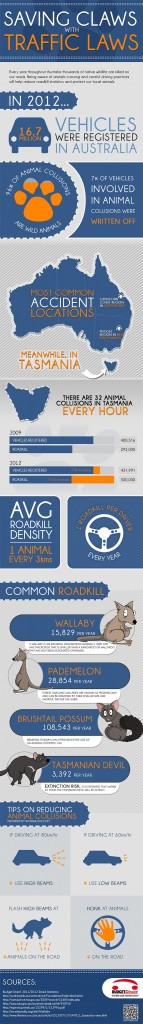 road kill infographic by budget direct