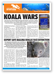 afa jan 2017 newsletter cover